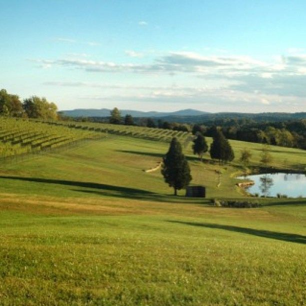 The view from Stone Tower Winery, opening in #Loudoun in 2014 #vawine #DCsWineCountry