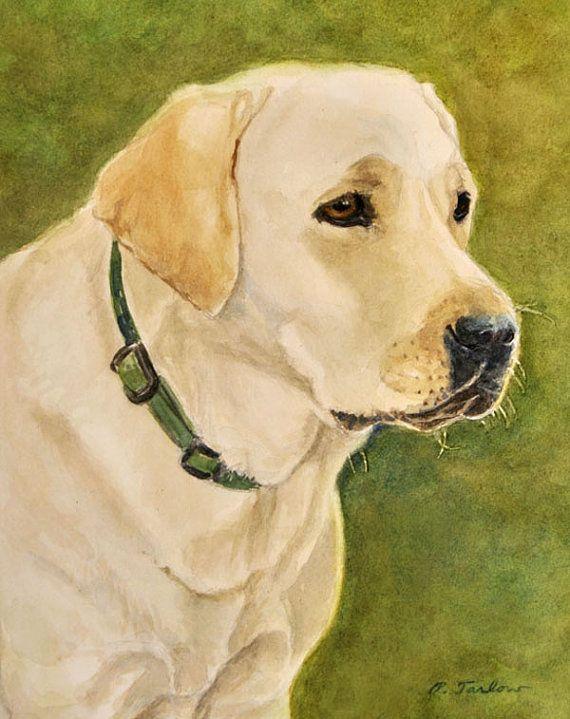 Yellow Labrador Retriever Print Labrador Portrait Labrador Etsy Dog Print Art Labrador Retriever Art Labrador Art