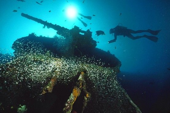 Weapons/gear rolled into the waters of the island Espiritu Santo at the end of WW2. Must scuba dive here!