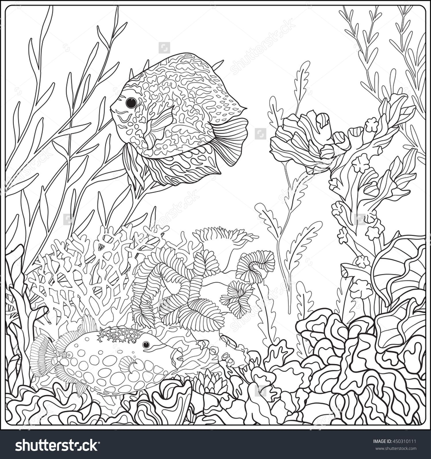 coral reef fish coloring pages - photo#20