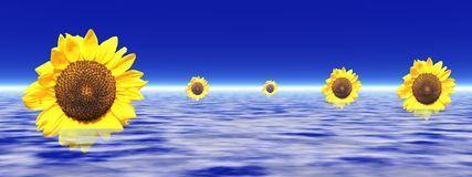 Girassóis no céu Imagem de Stock