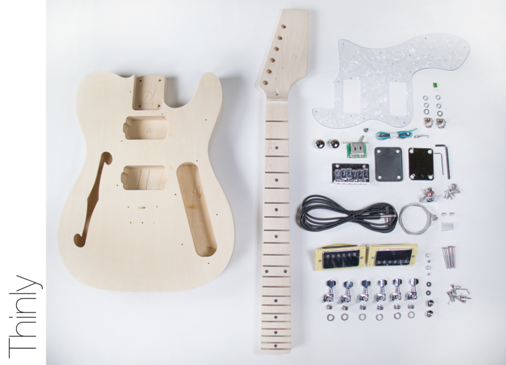 diy electric guitar kit tl thinline style build your own guitar kit wish list in 2019. Black Bedroom Furniture Sets. Home Design Ideas