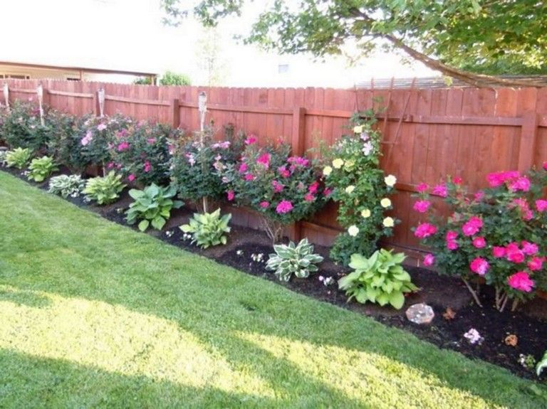 amazing  backyard privacy fence landscaping ideas