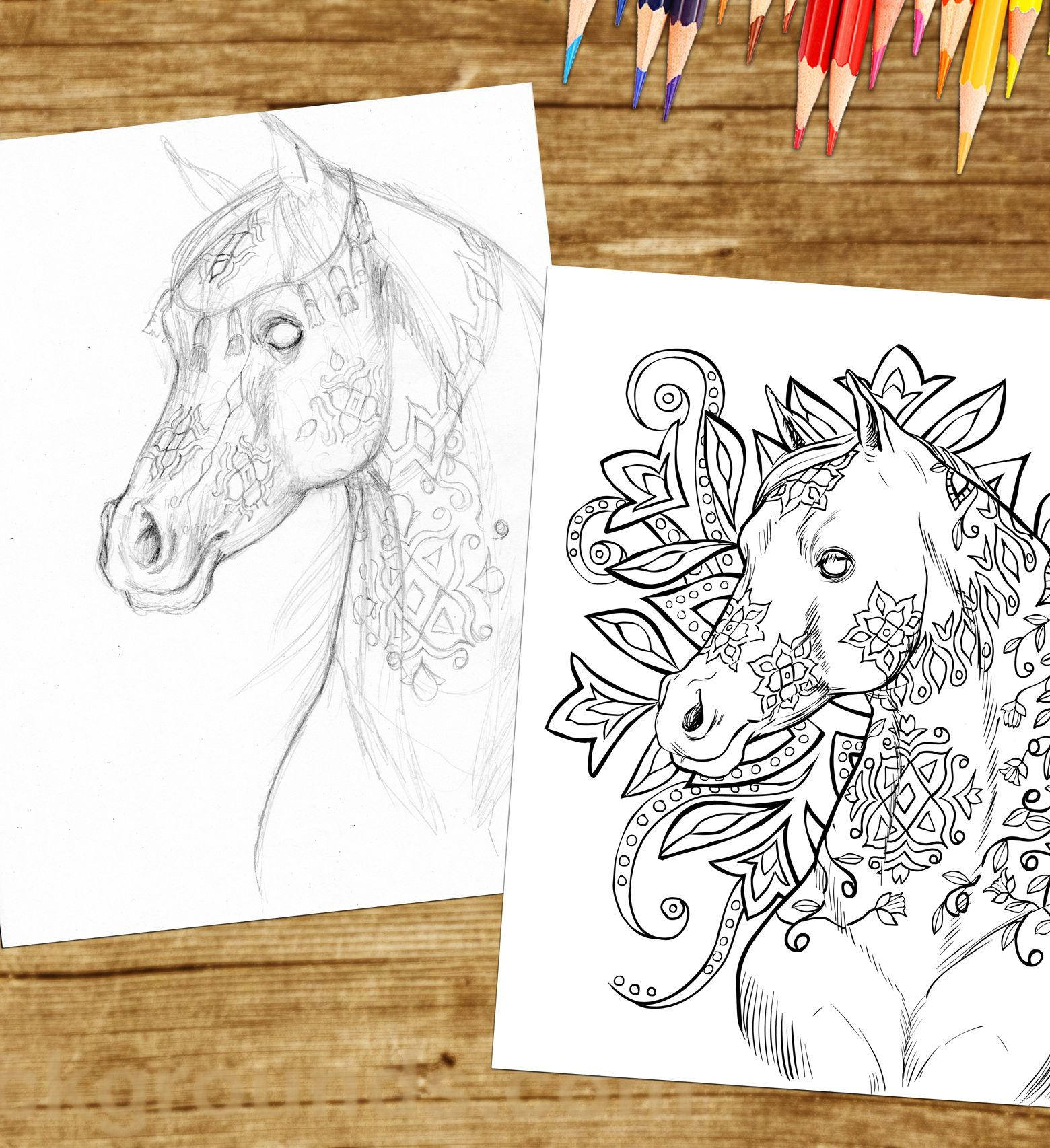 this beautiful arabian horse is in the next coloring book