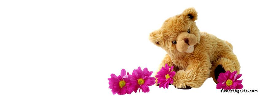 Cute Teddy Bear Facebook Timeline Cover Timeliness Pictures