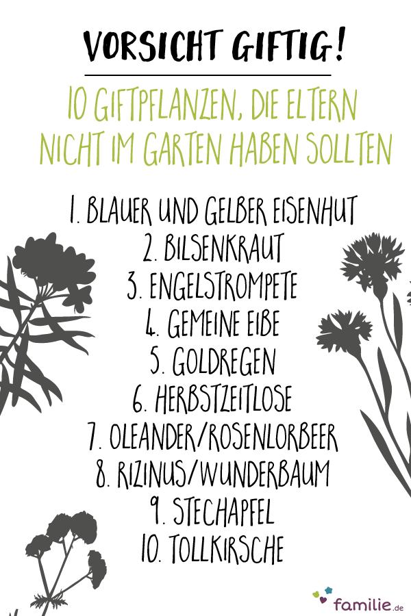 Besser Die Finger Von Lassen Wenn Kleine Kinder Im Haushalt Leben Giftige Pflanzen Garten Pflanzen