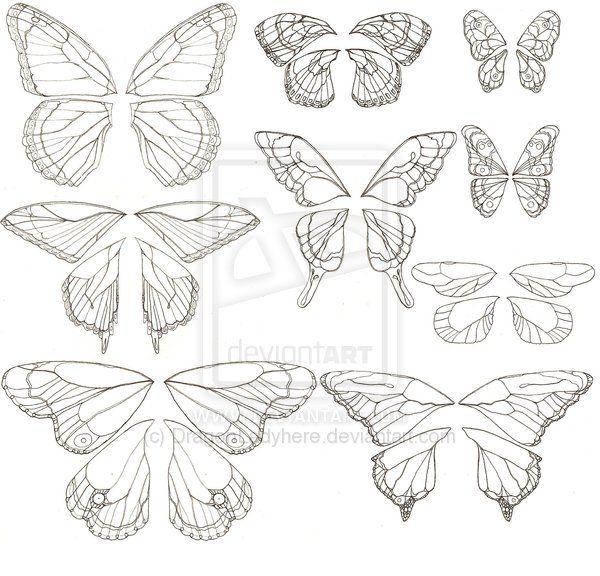 Butterfly Wing Patterns Cizimler Kelebekler Boyama Sayfalari