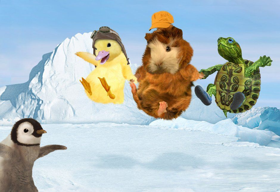 Amazon Com Wonder Pets Season 1 The Wonder Pets Amazon Digital Services Llc Wonder Pets Pets Young Animal