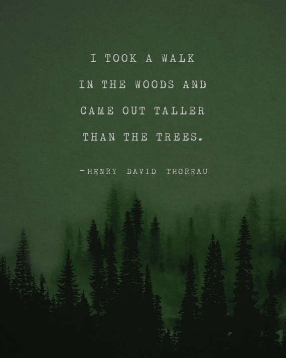 Henry David Thoreau quote poster, I took a walk in the woods, mens art, trees poster, gifts for him, wall art, green poster, men's gift