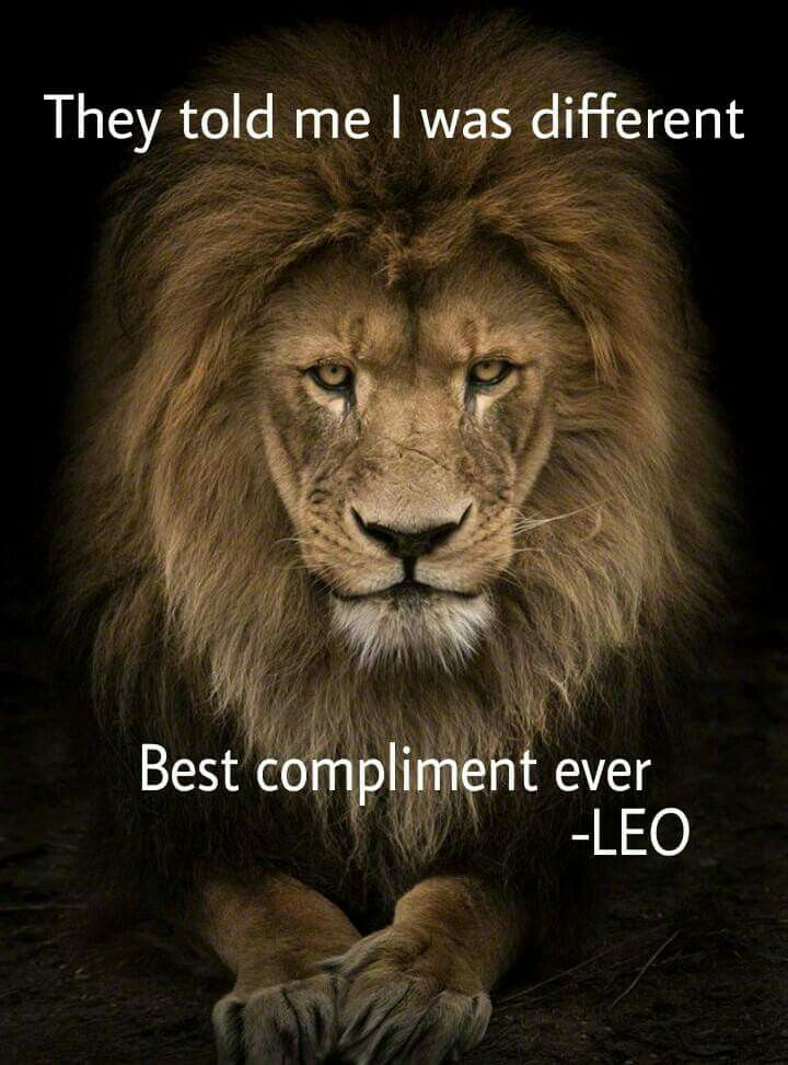 I don't want to be like everyone else. Do you? Lion quotes