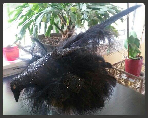 Whole lotta feathers