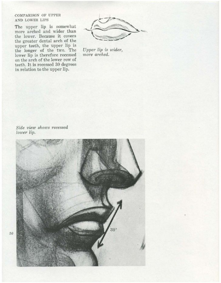 Burne hogarth -_drawing_the_human_head | ART Guides | Pinterest ...