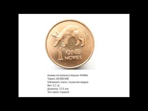 Весёлая нумизматика: тубкозуб   деликатес Замбии, монета 1 нгве 1983 год...