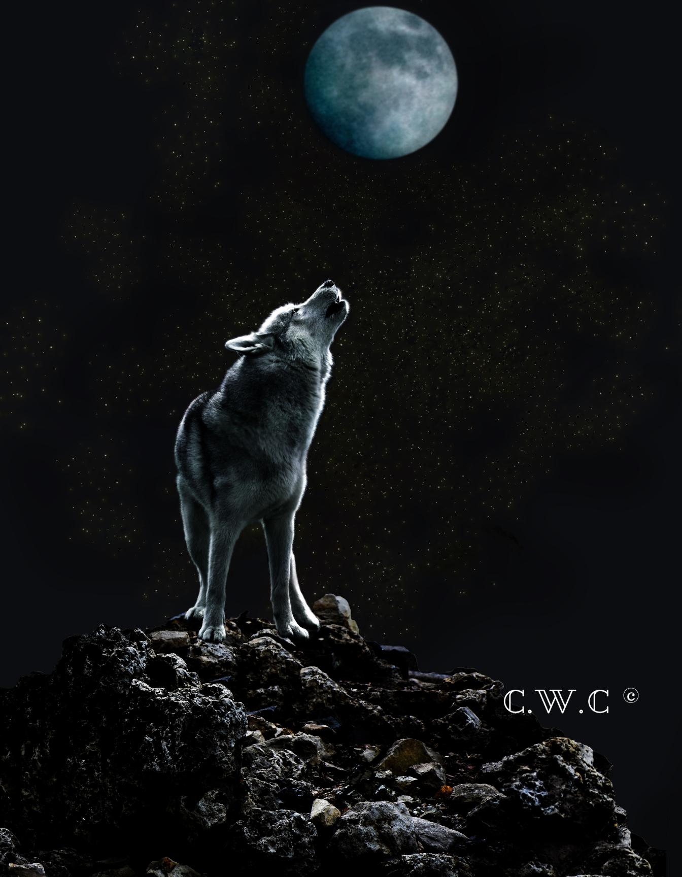 Men S Sweatshirt Women S Sweatshirt Wolf Howling At Moon Wolf Howling Wolf Moon