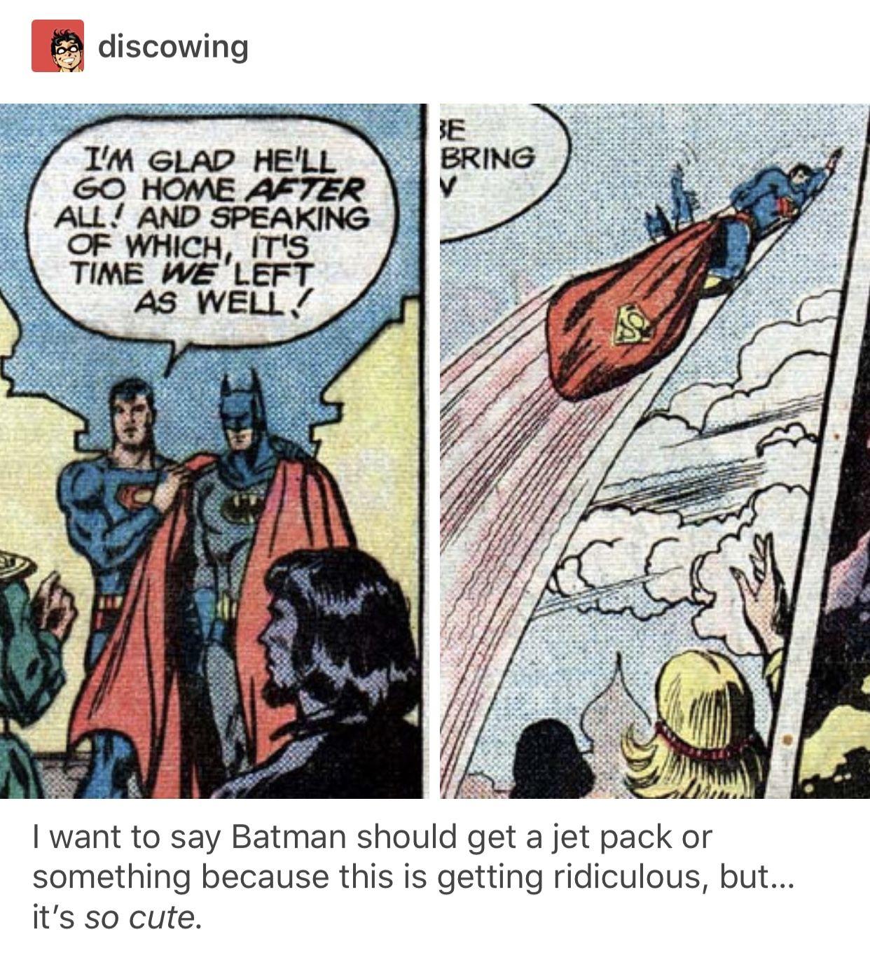 Batman and Superman | funny tumblr post | DC/Young Justice | Batman