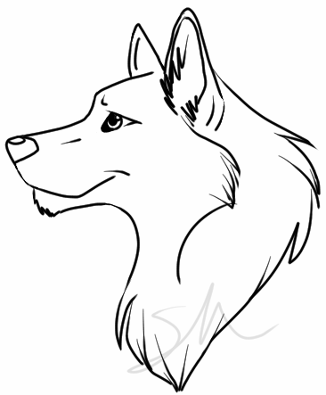 Easy wolf drawing clipart best