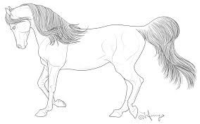 Icelandic Horse Art Horse Coloring Pages Horse Coloring Horse Art