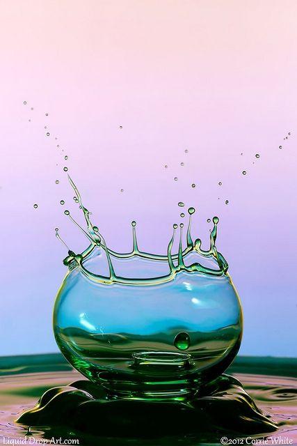 Fish Bowl by Corie White water drop art photo