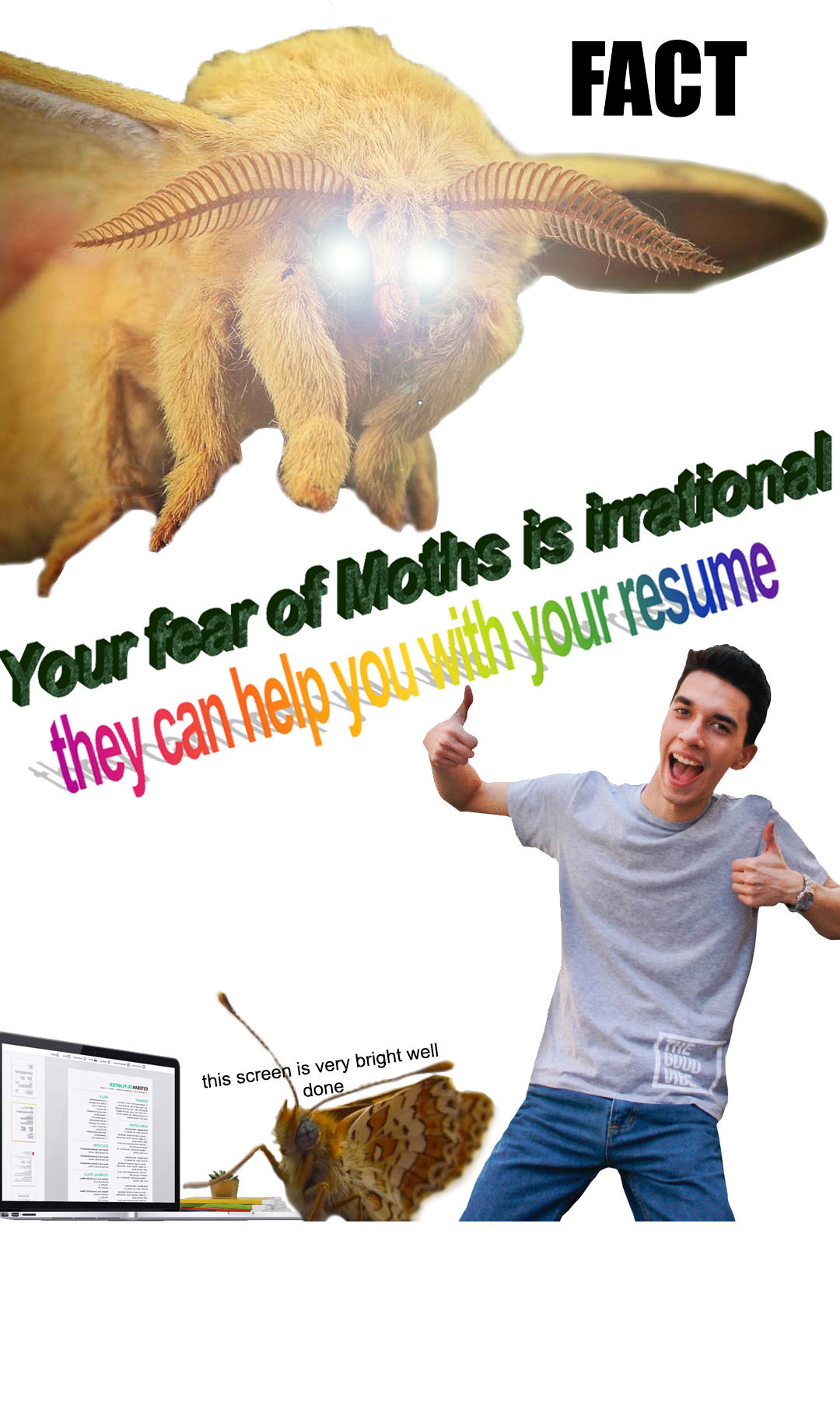 Pin by Wendy Pottratz on Surreal Memes Stupid memes