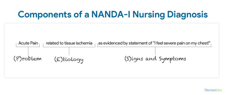Nursing Diagnosis Everything You Need To Know 2020 Guide Nursing Diagnosis Nursing Journal Diagnosis