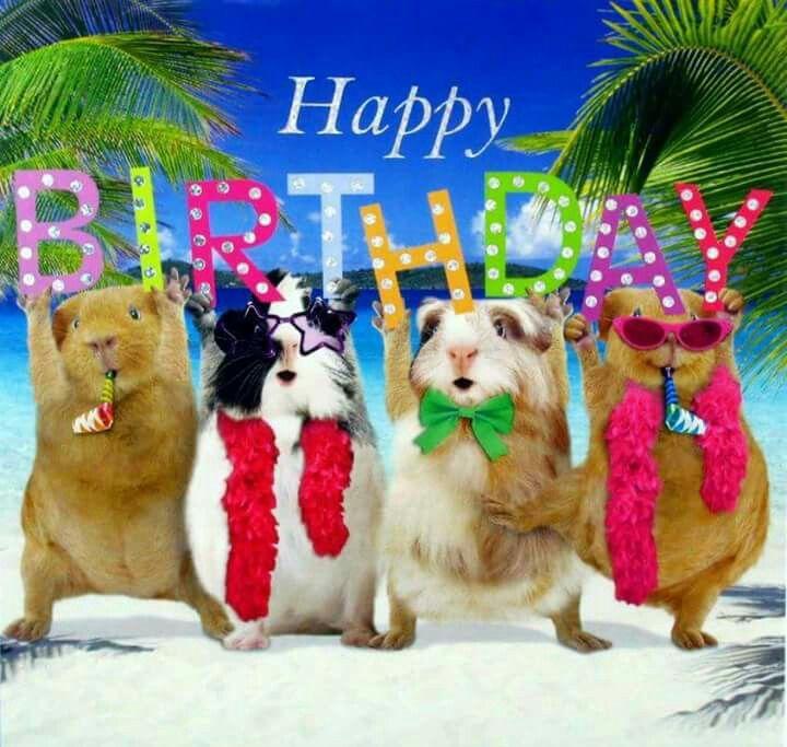 Greetings Bild Von Anne Henly Gluckwunsche Geburtstag Gluck