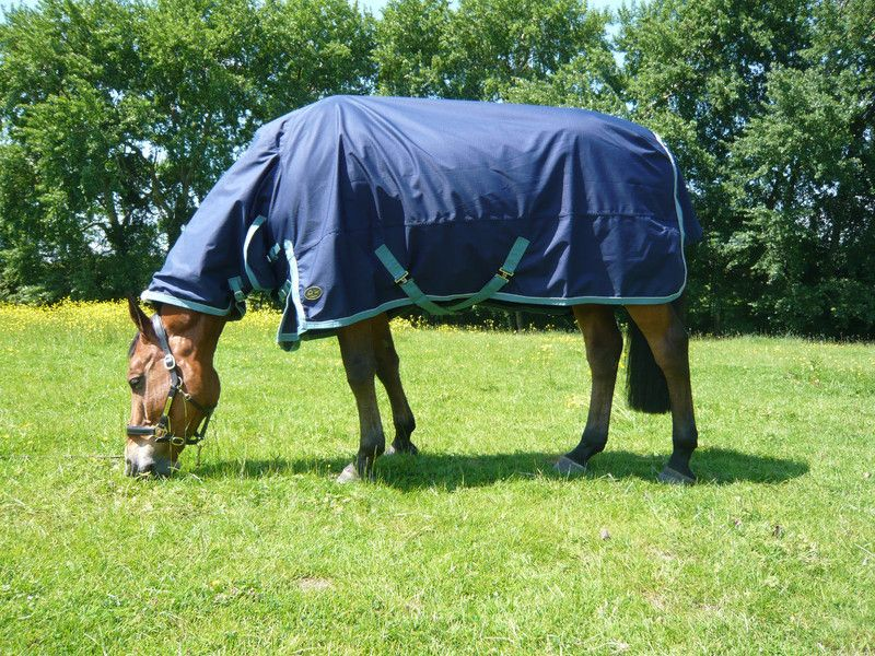 Mark Todd Lightweight Combo Turnout Rug
