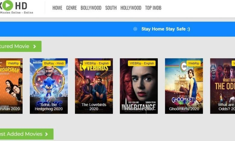 Rdxhd Website Telugu Bollywood Hollywood Punjabi Download All New Movies In 2020 New Movies Movies Bollywood Movies Online