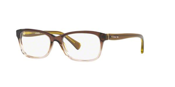 4071148598d28 Coach is a modern luxury brand with a rich American heritage. These women s  designer eyeglasses in olive brown gradient lend feminine charm to the ...