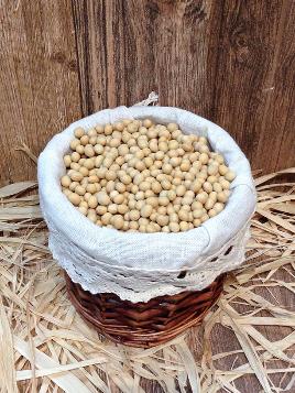 Colecesa white soybean
