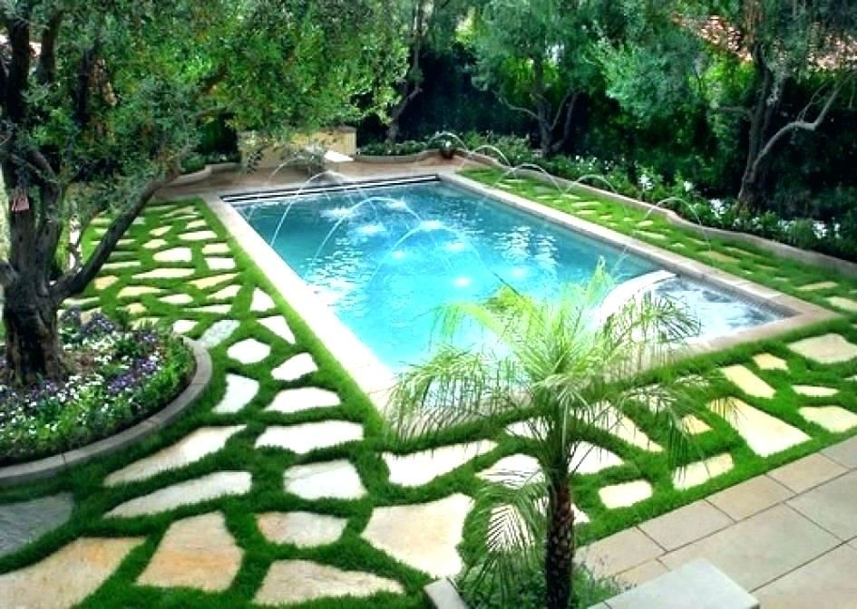 Backyard landscaping ideas around pool l plants around