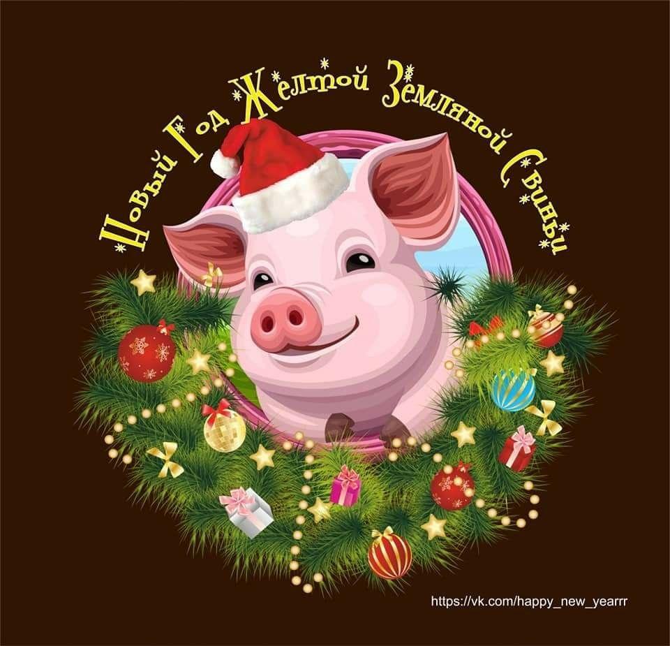окружает рождественская открытка год свиньи скольку денег было