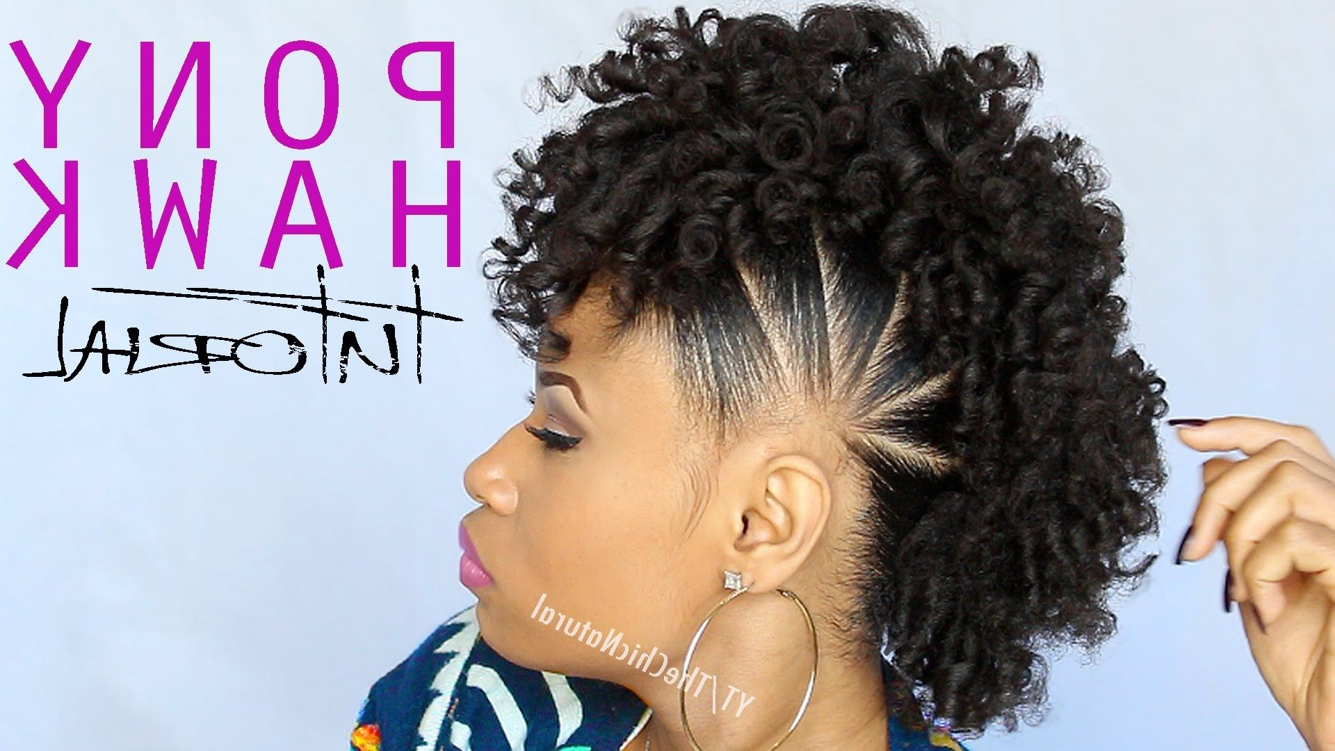 Curly mohawk black hair the pony hawk natural hairstyle