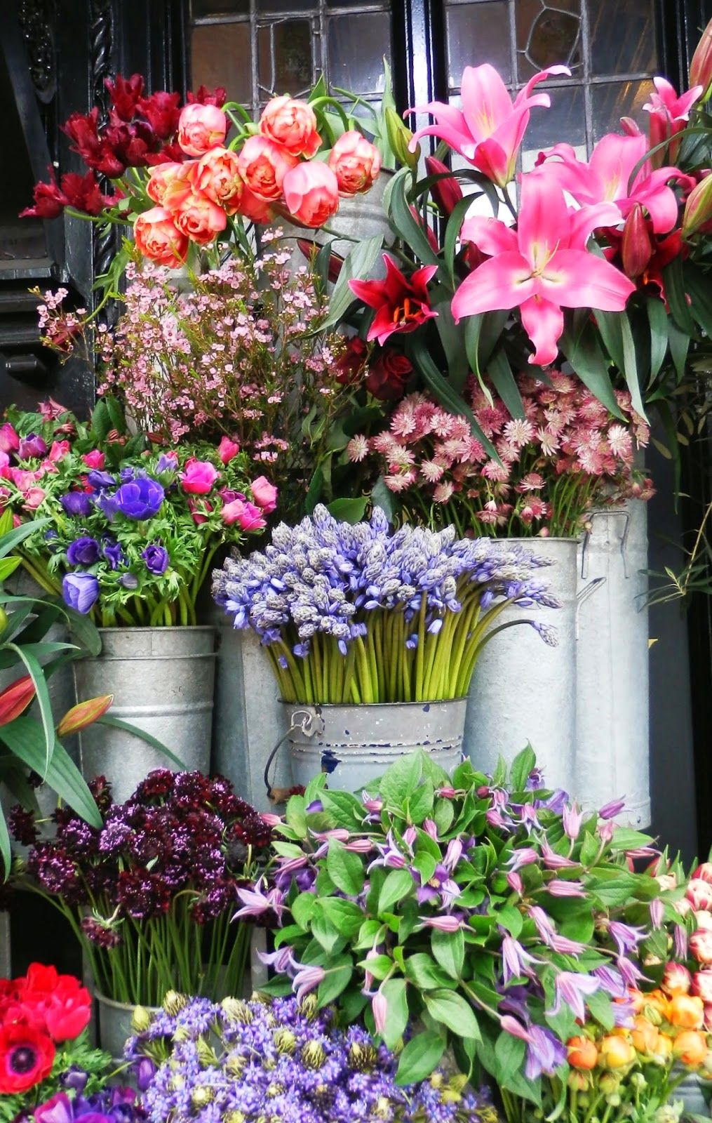 Beautiful flowers in buckets and can