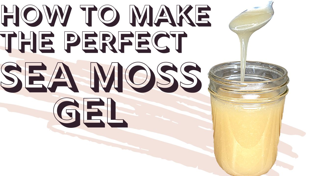 How to make sea moss gel sea moss moss gel