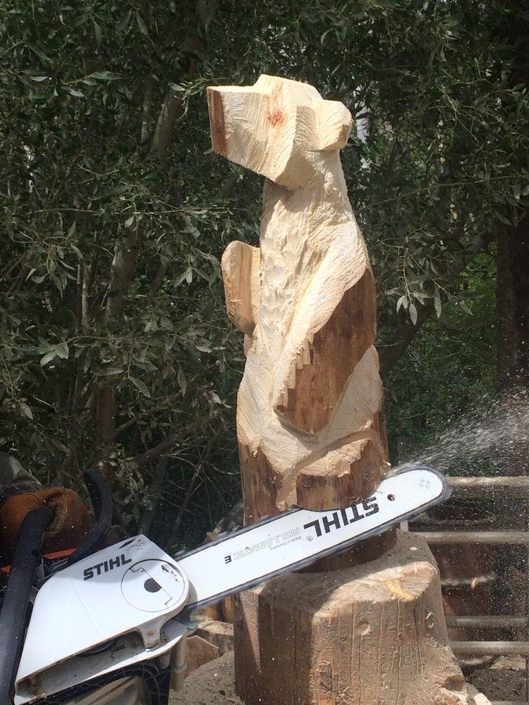 чаще фото резьбы дерева пилой конструировании каскадных