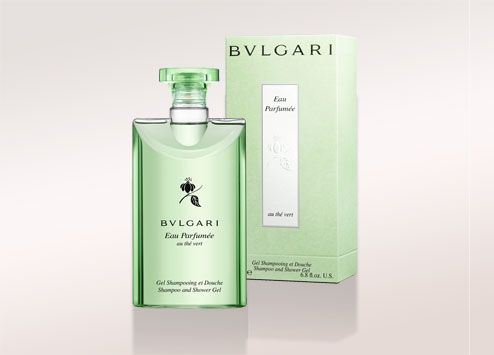"""He always smelled great, like his BULGARI GREEN SHOWER GEL. How it stayed with him all day was a  mystery. His black T-shirt spanned his biceps. He wore a watch as his only jewelry. His back looked athletic under  his shirt. I thought it would look even better without the shirt.  """"Babe,"""" Ranger said, """"if you don't back up a couple inches, we're going to be finding out about Bluttovich in  the morning.""""  I didn't move. I was contemplating. --Sizzling Sixteen"""