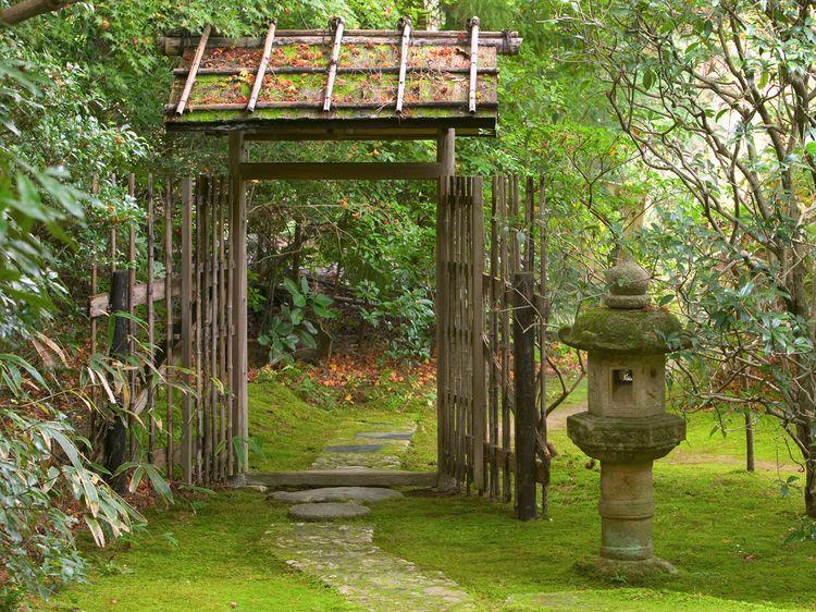Jardin japonais quelles plantes et comment l 39 am nager jardin travaux pinterest jardins - Jardin japonais plantes ...