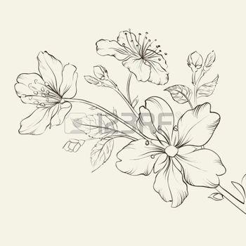 flor del cerezo dibujo - Buscar con Google | FC | Pinterest | Tatoo ...