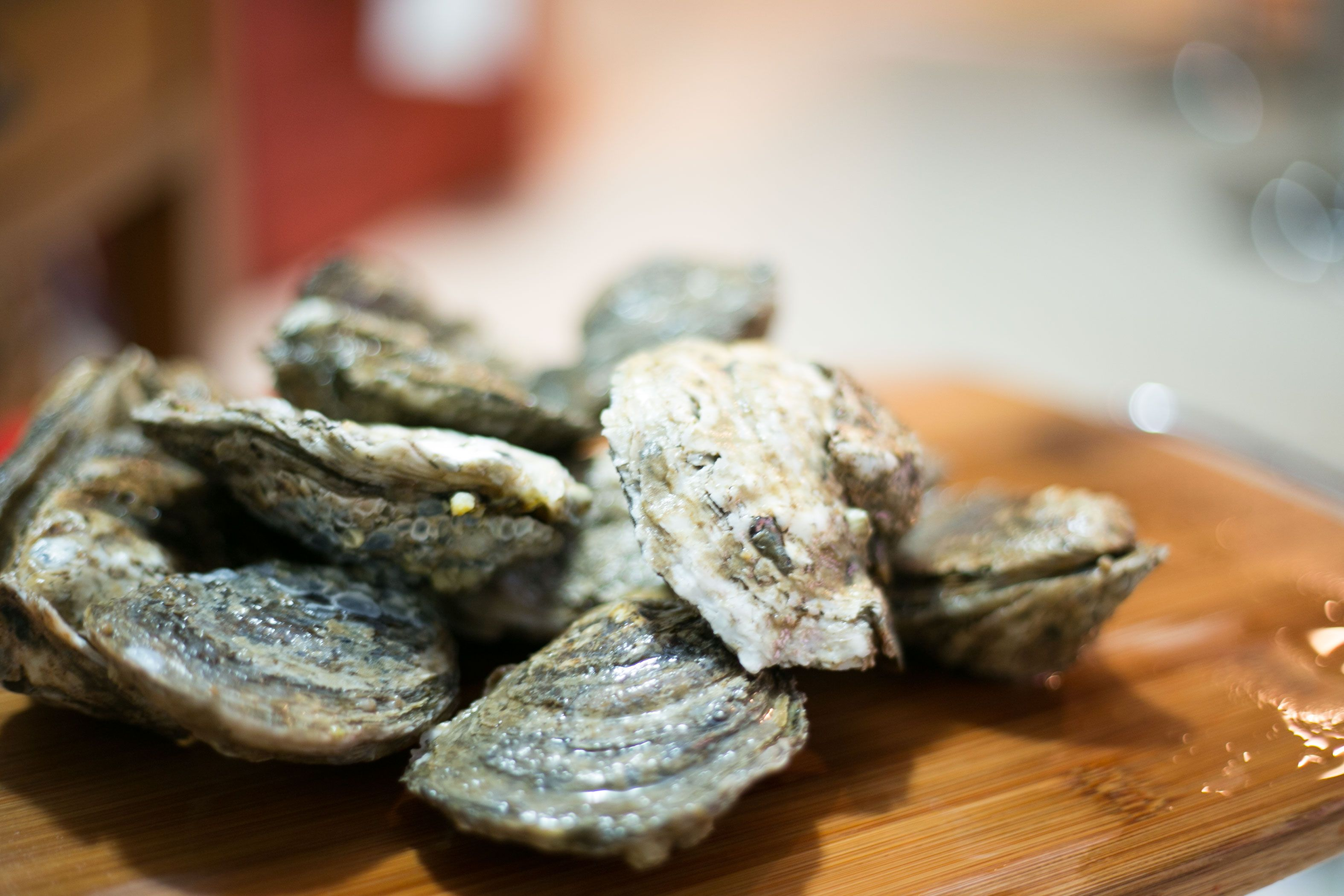 Image result for eating fresh oysters