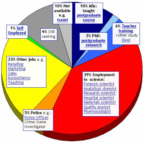 This Pie Chart Is Identifying The Average EmployAbility In