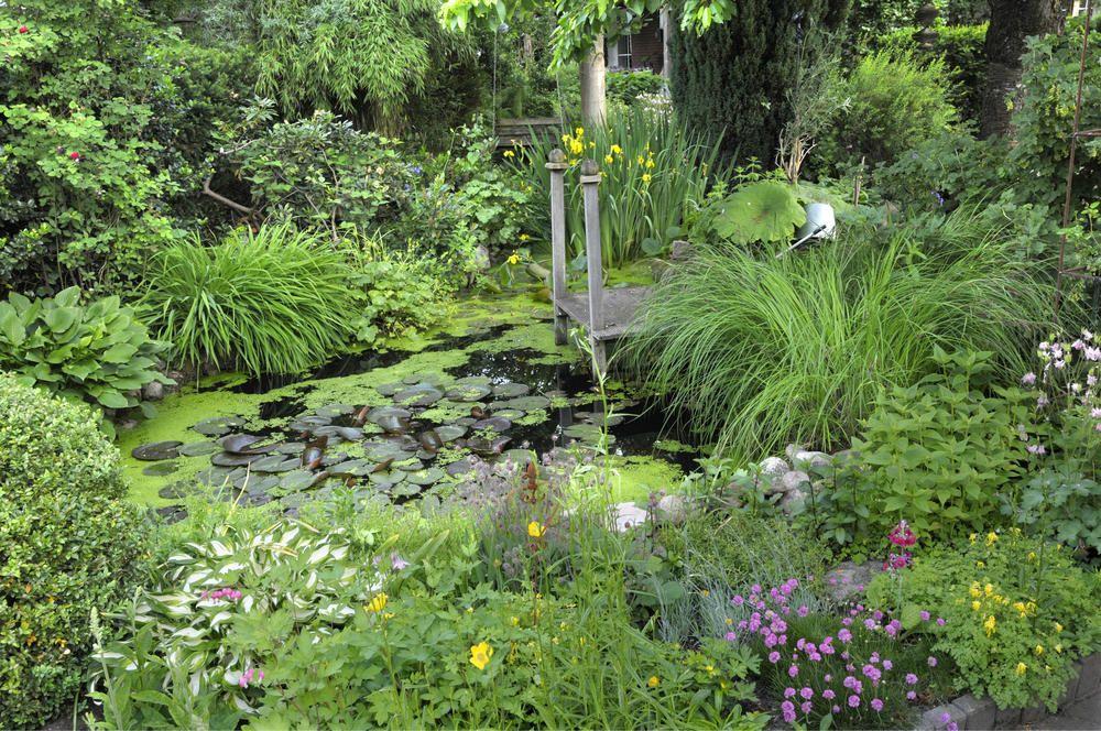 Gestaltungstipps für große Gärten | Glücklich, Pflege und Gärten