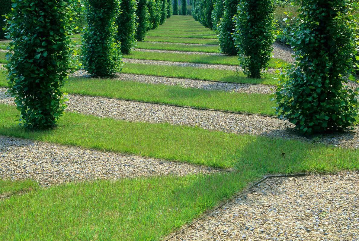 Oyama Training Services PWP Landscape Architecture