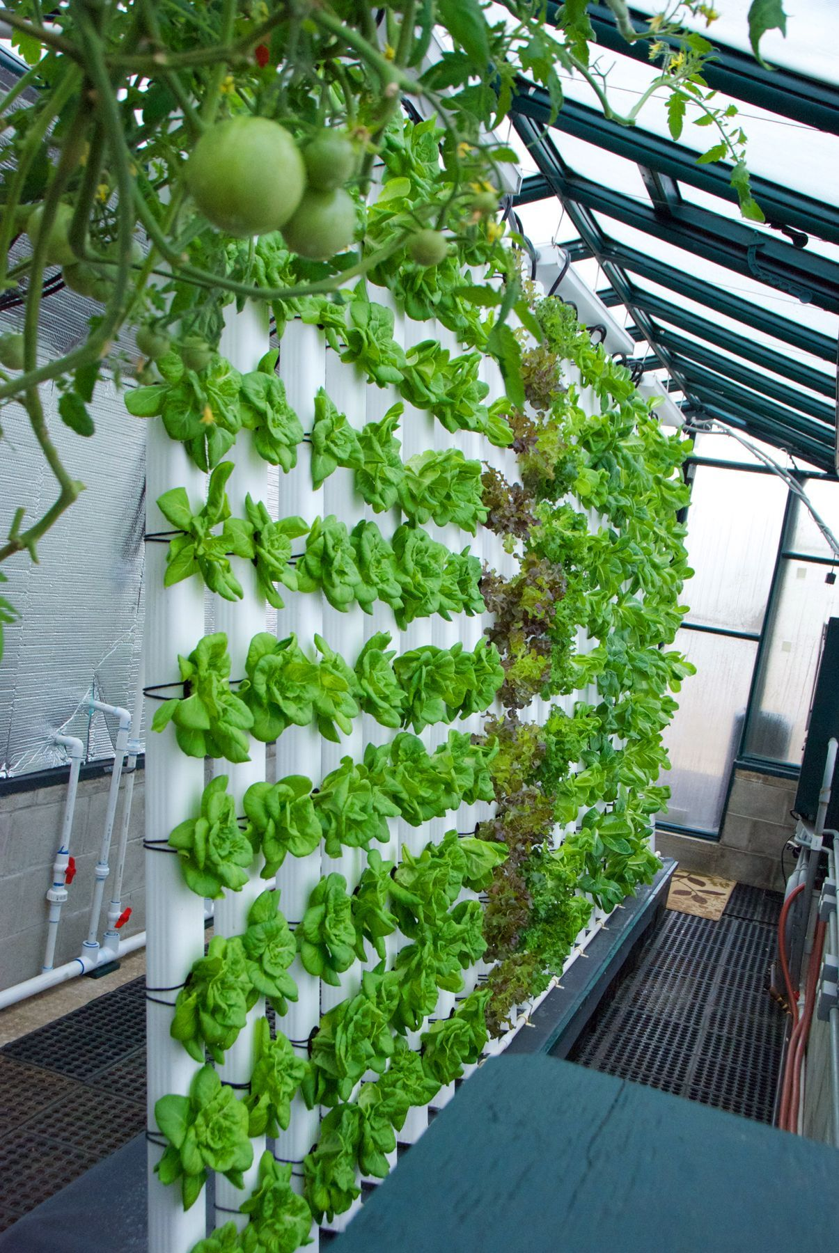Our 80º Vertical Aquaponics System Is All About Saving 400 x 300