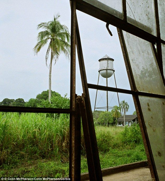 Welcome To Fordlandia: Henry Ford's Lost City In The