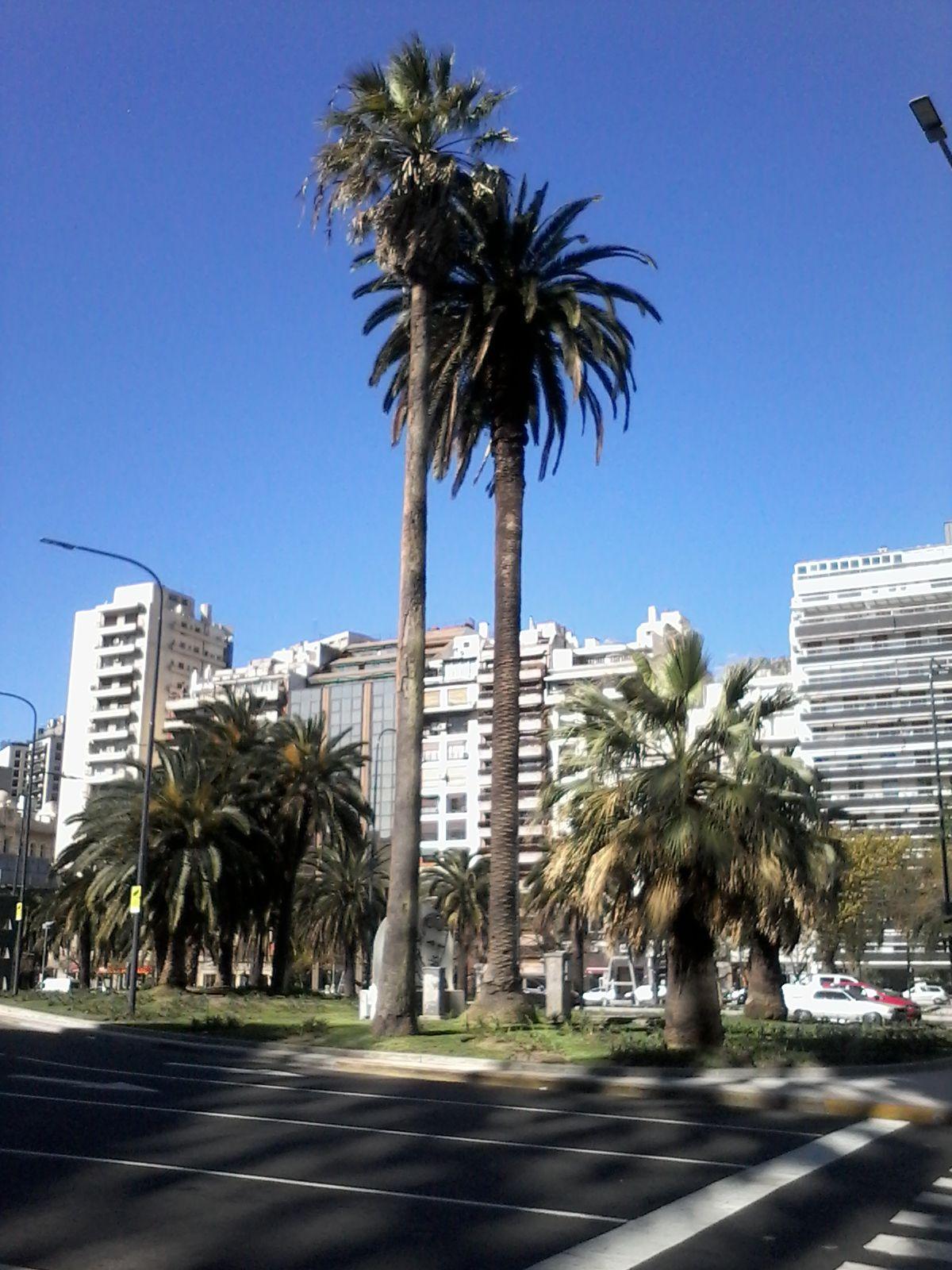 Buenos Aires. Argentina.