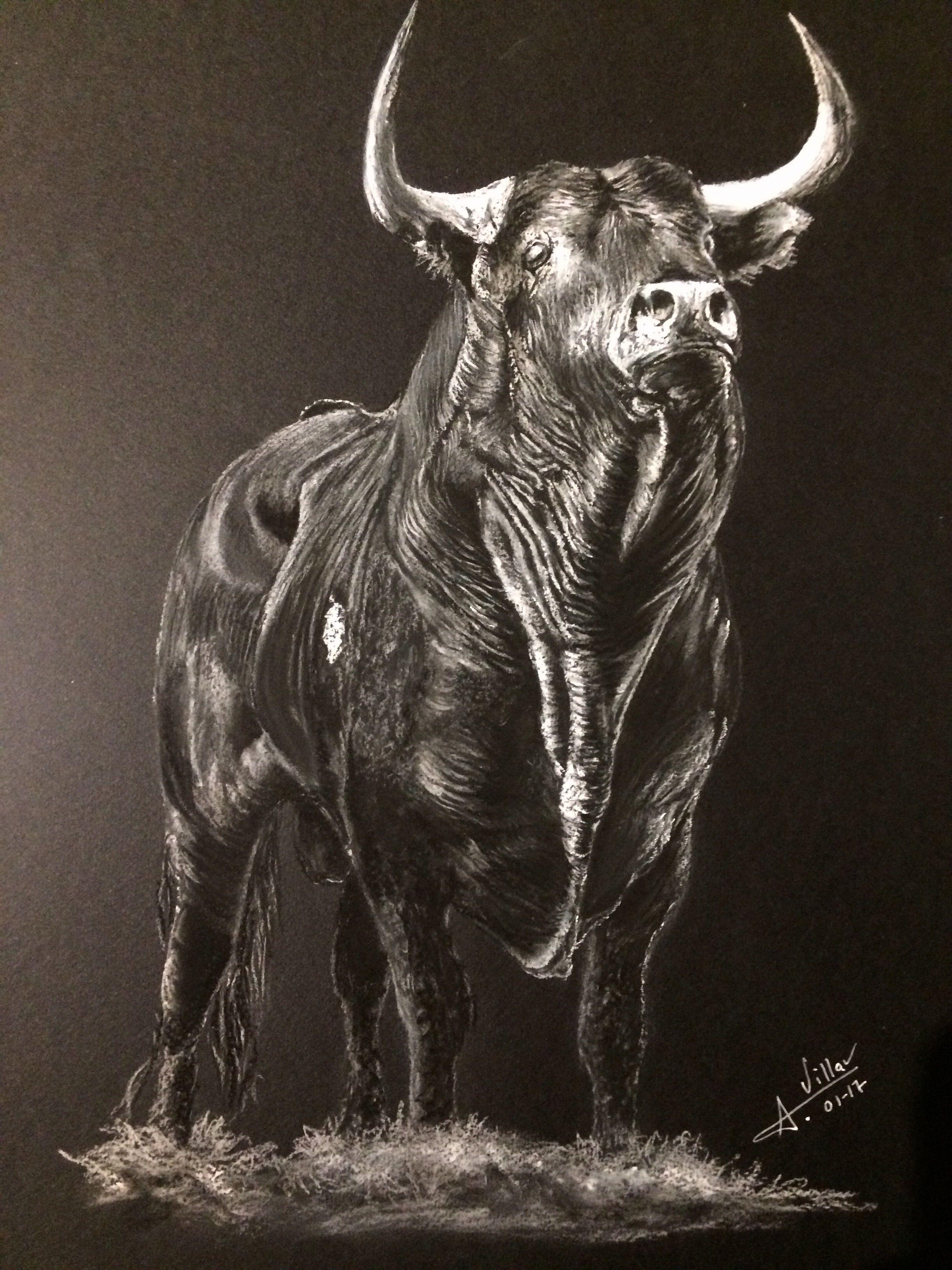 La Mirada Del Toro Dibujo Realizado A Pastel Seco Toros Bull