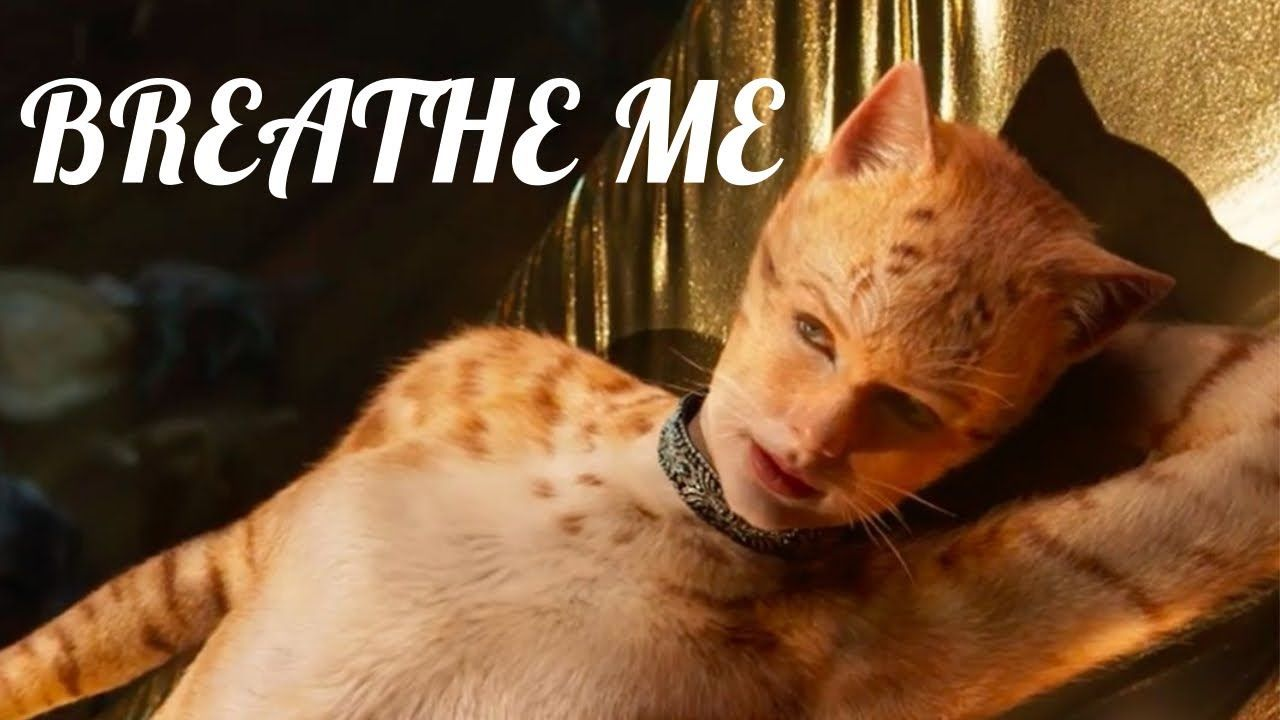 Cats Tribute Breathe Me By Sia Youtube Cat Movie Cats Cats Musical