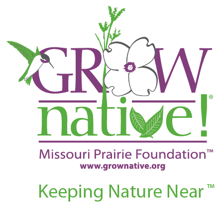 Native Plant Database native plants in the lower MidwestMissouri southern Illinois eastern Kansas and northern Arkansas