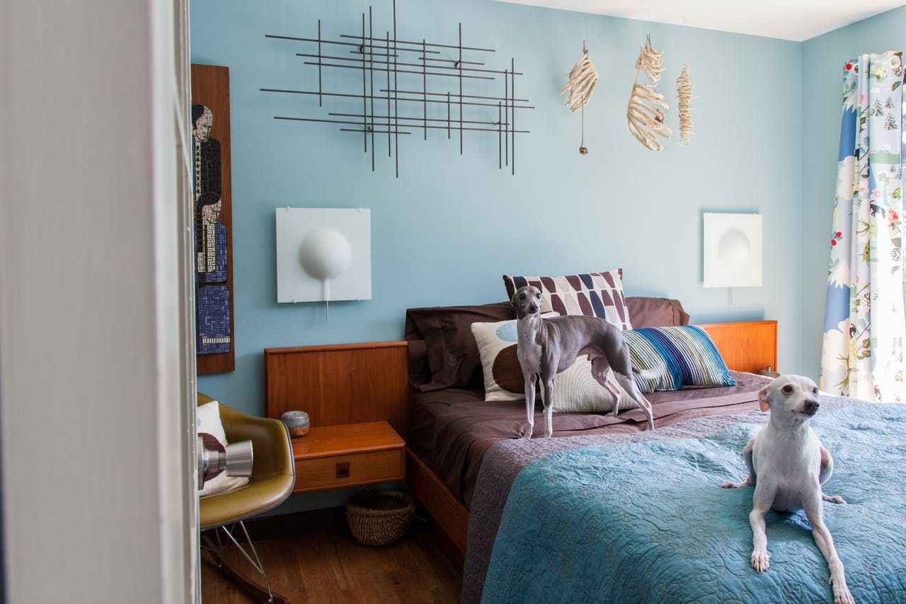 A Modern, Colorful and Clever Seattle Home Interior