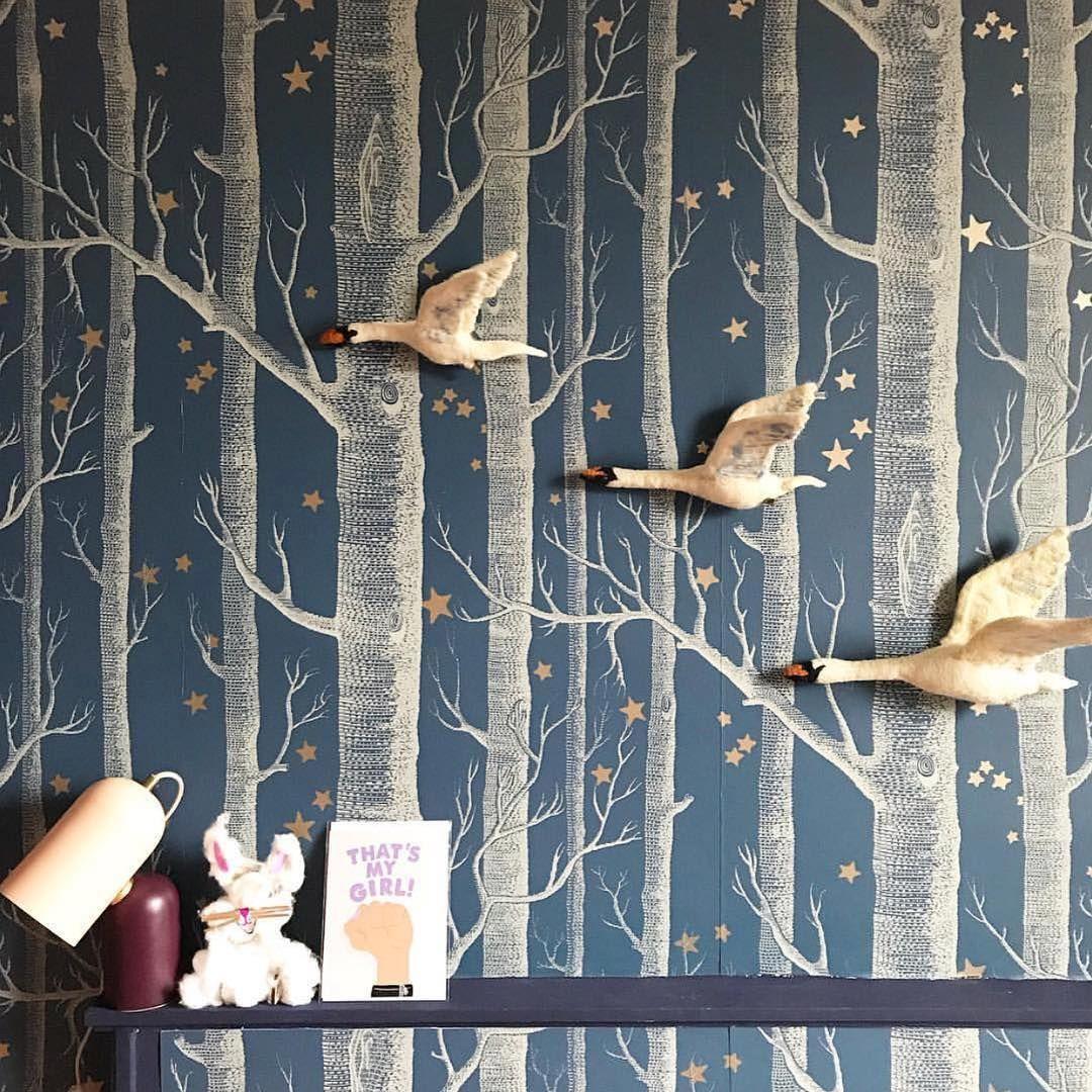 Woods Stars 103 11047 In 2020 Birch Tree Wallpaper Tree